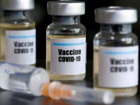 ampolas de vacina