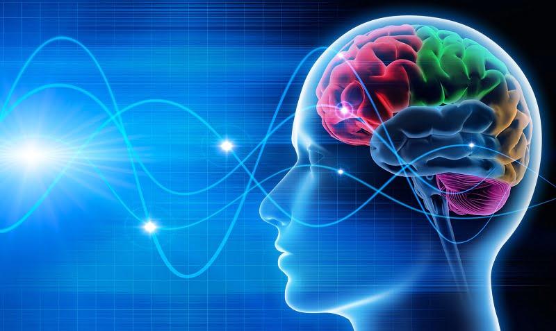 Neurociência