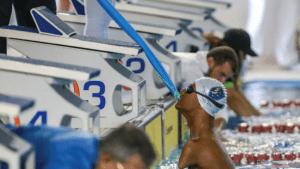 O atleta Gabriel Araújo aguarda largada na piscina durante Circuito Brasil de Natação em julho de 2019