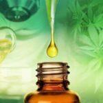 Justiça obriga plano de saúde a custear medicamento à base de cannabis